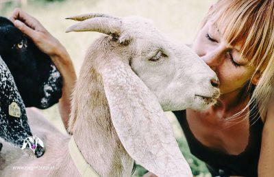 Ziegenzenzi - Aus Liebe zum Tier
